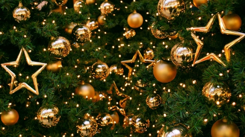 51397-large-christmas-tree-wallpaper-2560x1600-high-resolution